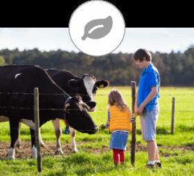 Thomas Hartmann, unabhängiger Versicherungsmakler, Feldkirch, Versicherung für Landwirtschaften